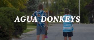 Агуа Донкис